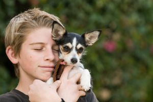 boy and his Chihuahua - photo by Cris Watk