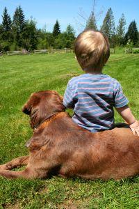 boy and his dog — photo by Beth Twist